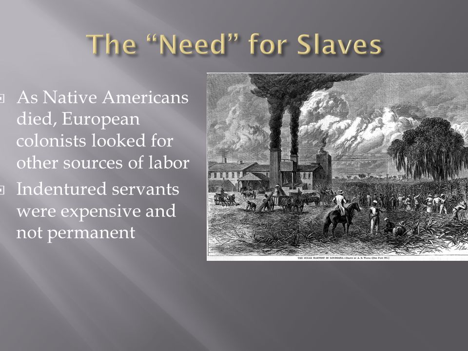  As Native Americans died, European colonists looked for other sources of labor  Indentured servants were expensive and not permanent