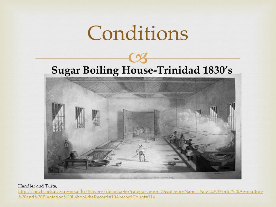  Conditions Sugar Boiling House-Trinidad 1830's Handler and Tuite, http://hitchcock.itc.virginia.edu/Slavery/details.php categorynum=7&categoryName=New%20World%20Agriculture %20and%20Plantation%20Labor&theRecord=10&recordCount=114 http://hitchcock.itc.virginia.edu/Slavery/details.php categorynum=7&categoryName=New%20World%20Agriculture %20and%20Plantation%20Labor&theRecord=10&recordCount=114