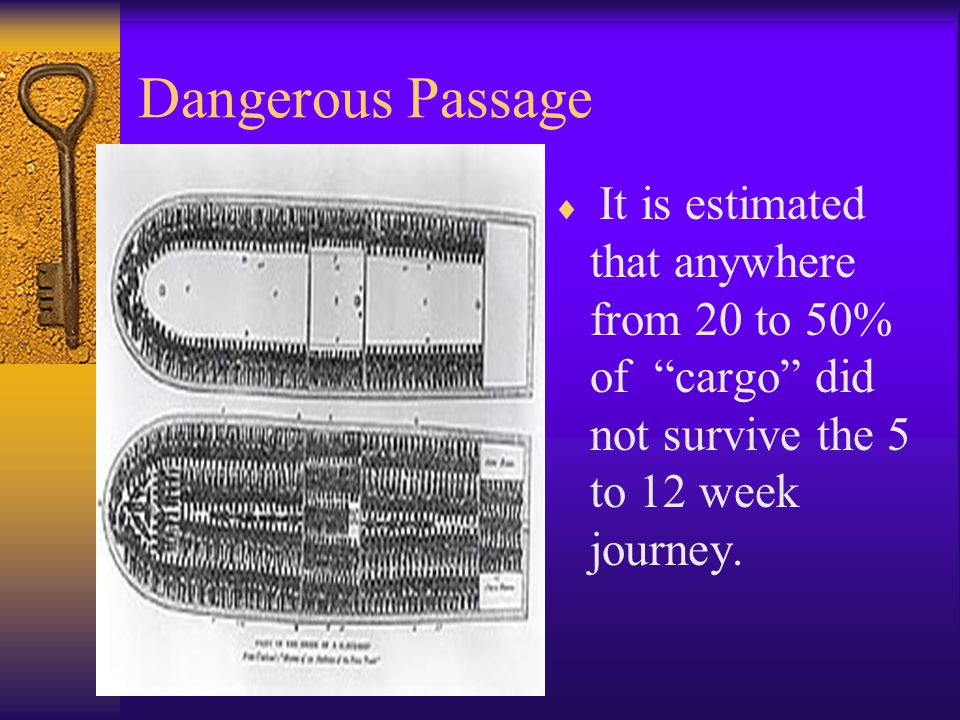 "Dangerous Passage  It is estimated that anywhere from 20 to 50% of ""cargo"" did not survive the 5 to 12 week journey."