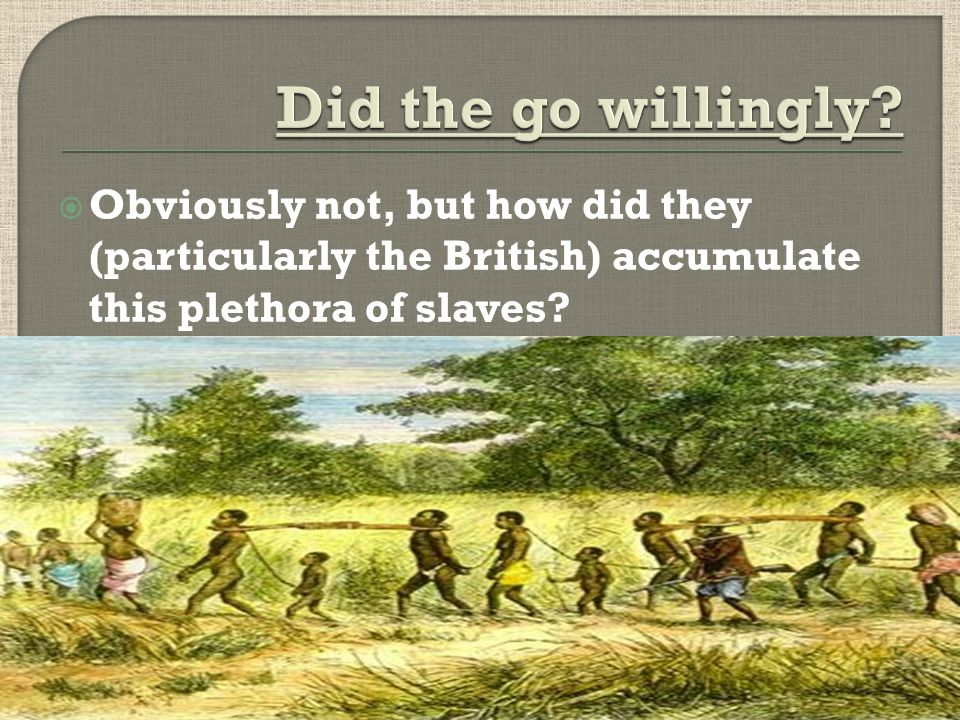  Obviously not, but how did they (particularly the British) accumulate this plethora of slaves?