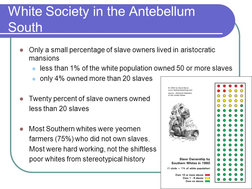 White Society in the Antebellum South Only a small percentage of slave owners lived in aristocratic mansions less than 1% of the white population owne