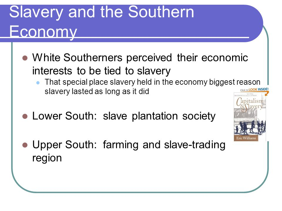 Slavery and the Southern Economy White Southerners perceived their economic interests to be tied to slavery That special place slavery held in the eco