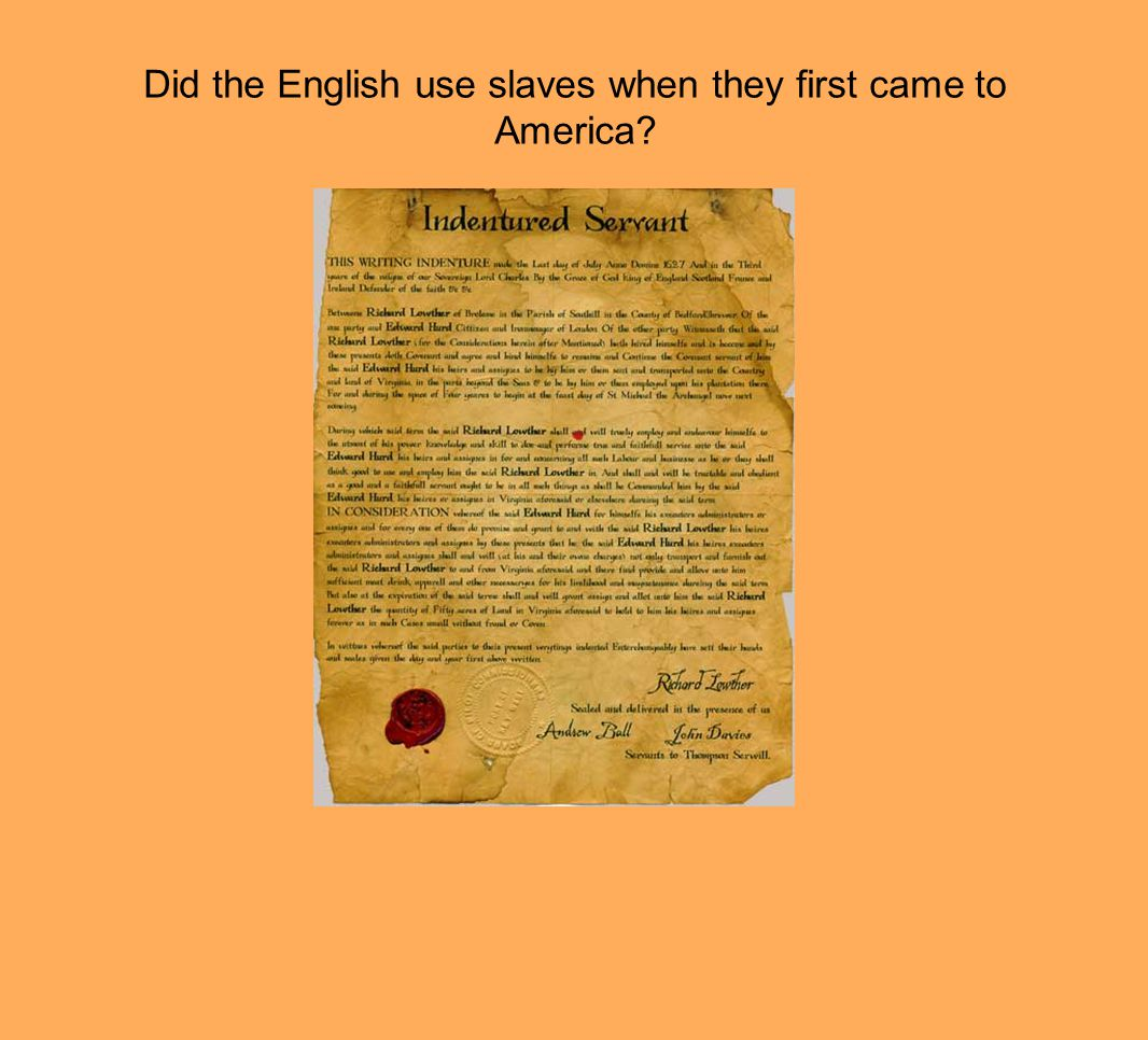 Did the English use slaves when they first came to America