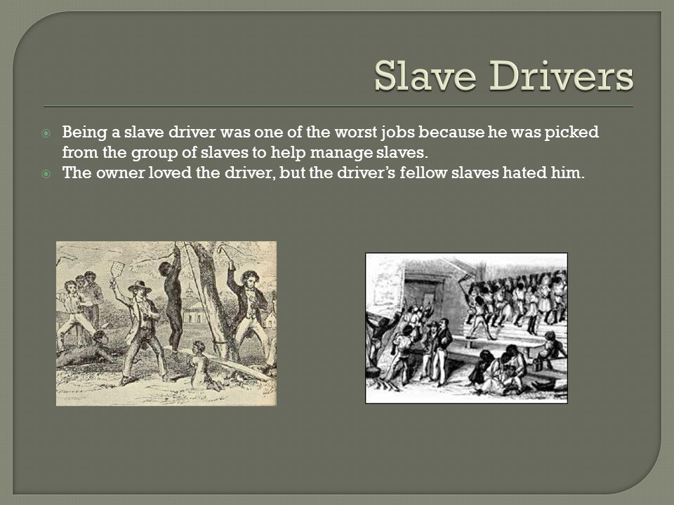  Being a slave driver was one of the worst jobs because he was picked from the group of slaves to help manage slaves.