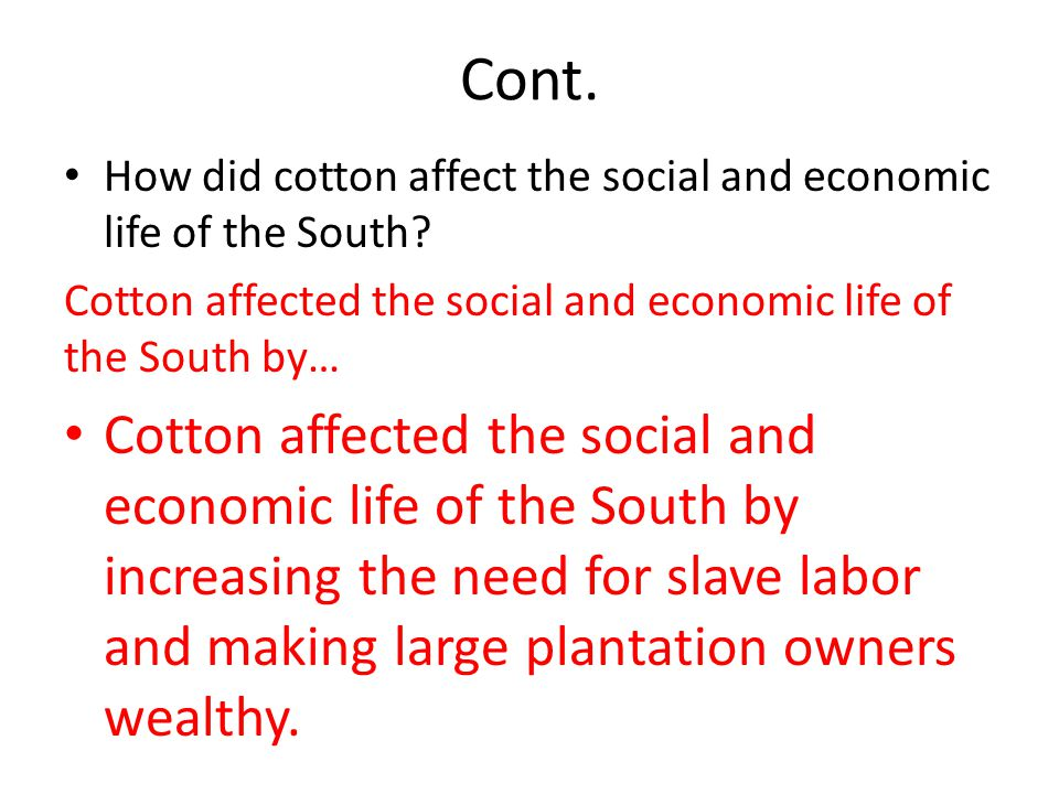 Cont. How did cotton affect the social and economic life of the South.
