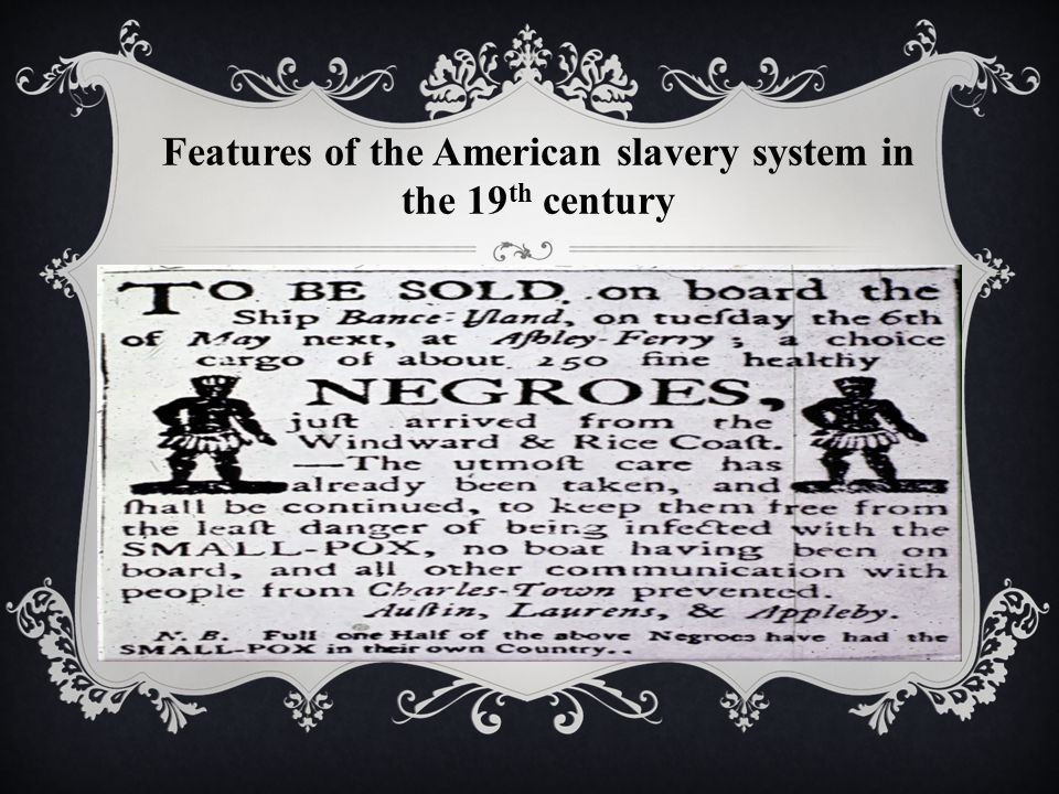 Features of the American slavery system in the 19 th century