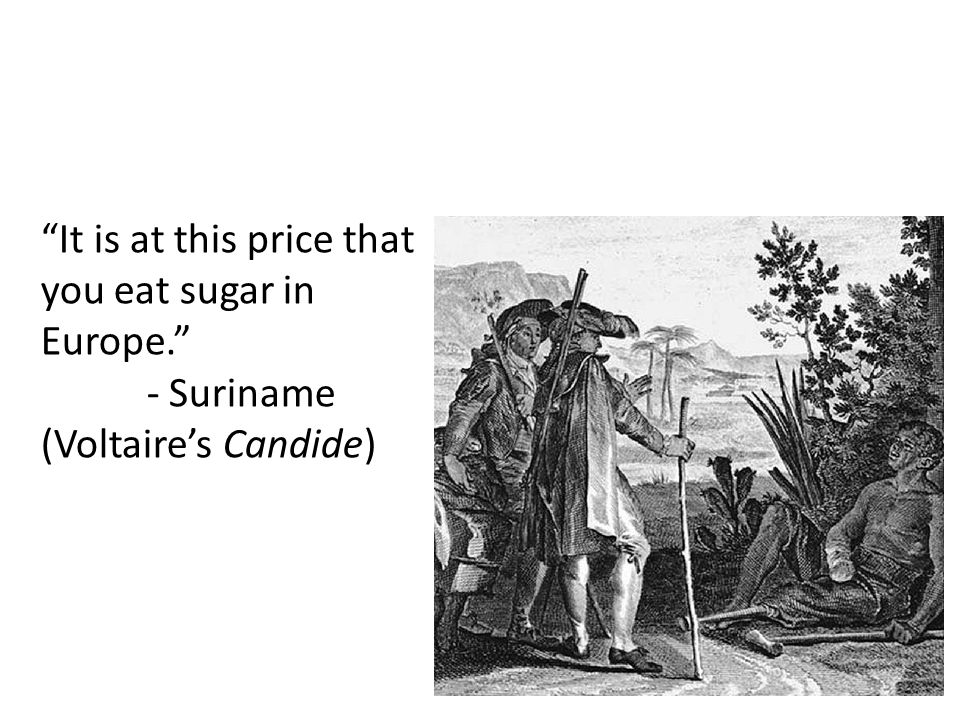 It is at this price that you eat sugar in Europe. - Suriname (Voltaire's Candide)