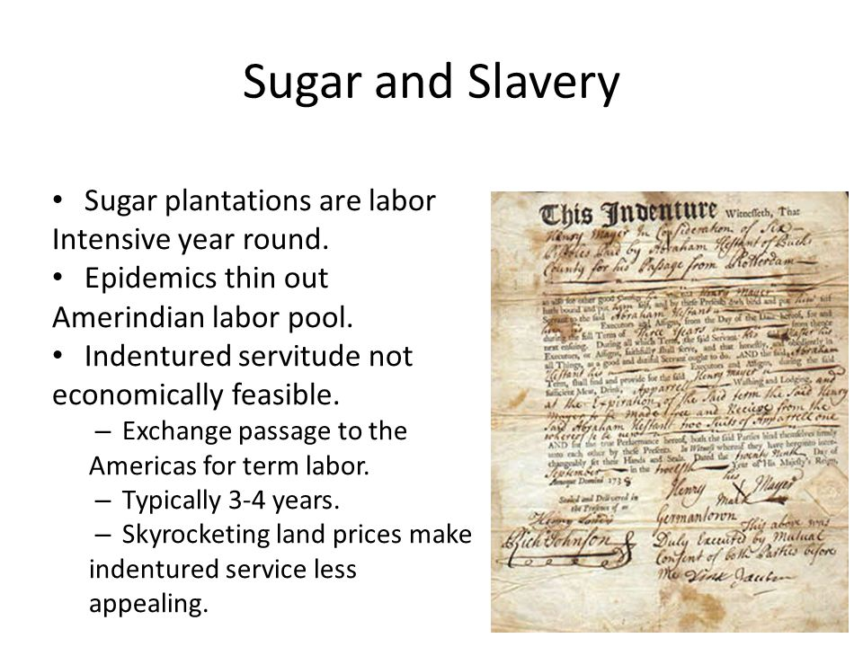 Sugar and Slavery Portuguese experience using African slaves in African sugar colonies.