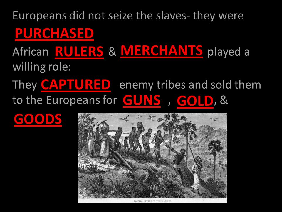 Europeans did not seize the slaves- they were African & played a willing role: They enemy tribes and sold them to the Europeans for,, & RULERS MERCHANTS PURCHASED CAPTURED GUNS GOLD GOODS