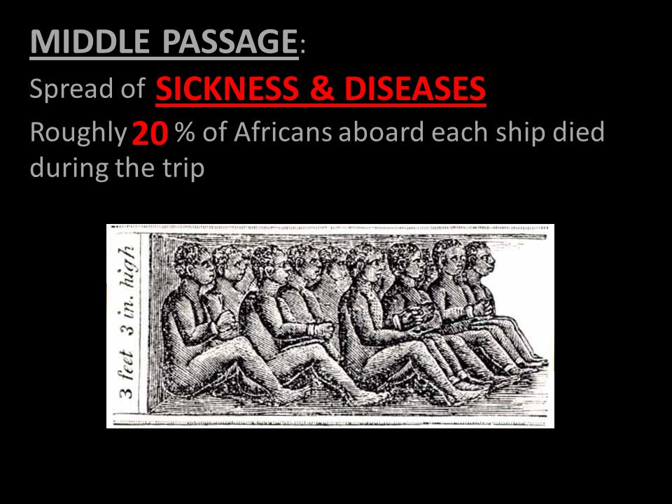 MIDDLE PASSAGE : Spread of Roughly % of Africans aboard each ship died during the trip SICKNESS & DISEASES 20