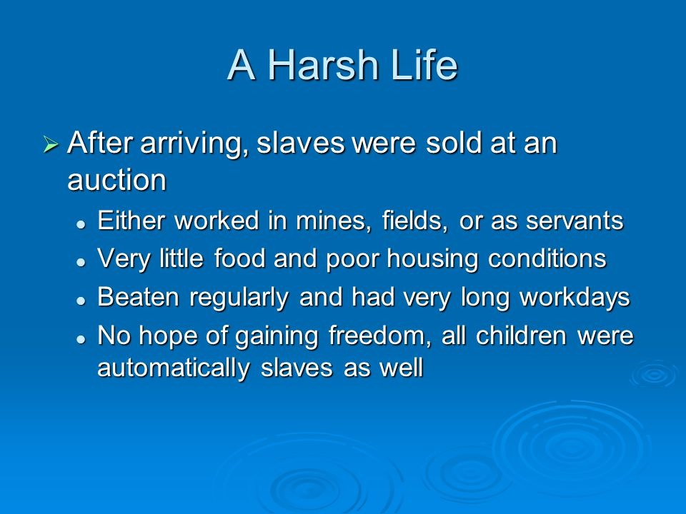 A Harsh Life  After arriving, slaves were sold at an auction Either worked in mines, fields, or as servants Either worked in mines, fields, or as servants Very little food and poor housing conditions Very little food and poor housing conditions Beaten regularly and had very long workdays Beaten regularly and had very long workdays No hope of gaining freedom, all children were automatically slaves as well No hope of gaining freedom, all children were automatically slaves as well