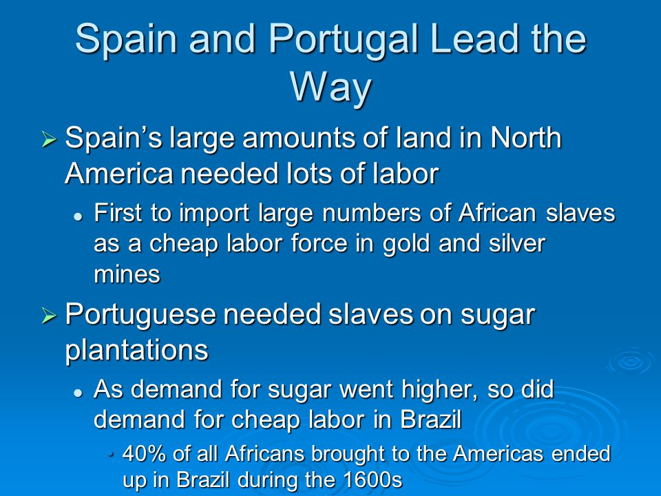 Spain and Portugal Lead the Way  Spain's large amounts of land in North America needed lots of labor First to import large numbers of African slaves as a cheap labor force in gold and silver mines First to import large numbers of African slaves as a cheap labor force in gold and silver mines  Portuguese needed slaves on sugar plantations As demand for sugar went higher, so did demand for cheap labor in Brazil As demand for sugar went higher, so did demand for cheap labor in Brazil 40% of all Africans brought to the Americas ended up in Brazil during the 1600s40% of all Africans brought to the Americas ended up in Brazil during the 1600s