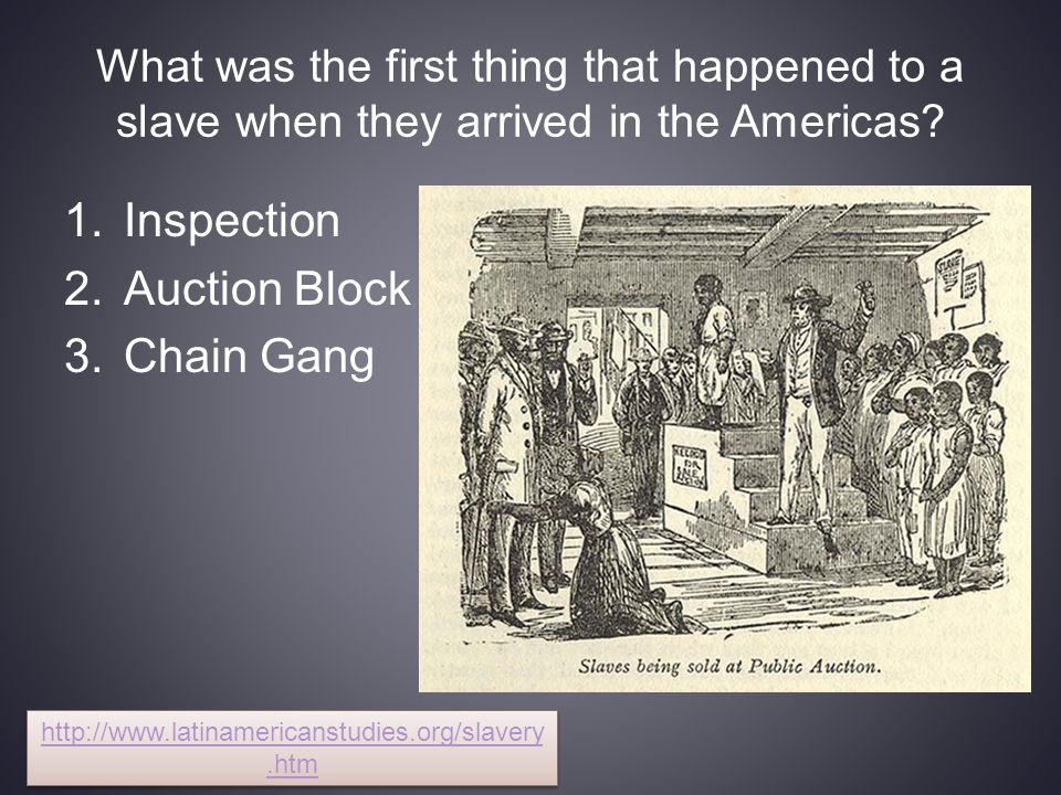 What was the first thing that happened to a slave when they arrived in the Americas.