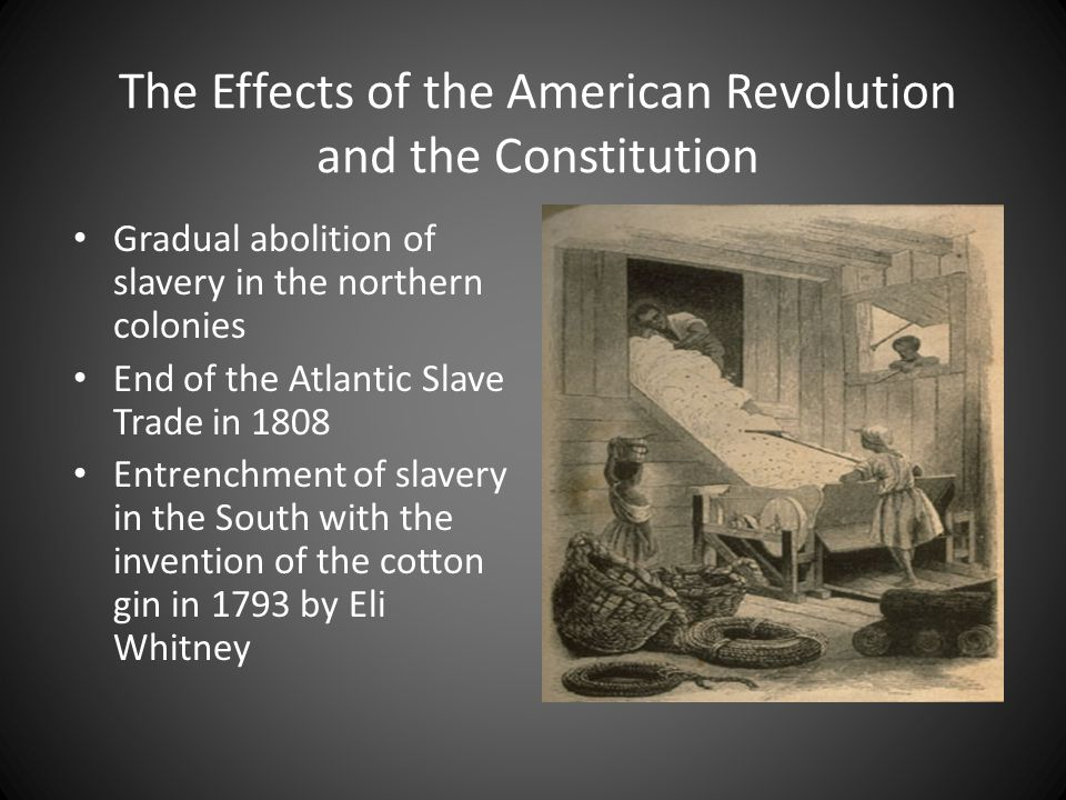 Slavery in the Colonies New England colonies: no large plantation systems; slaves lived in cities and small farms Chesapeake Bay colonies: large tobacco plantations; center of the domestic slave trade Carolinas and Georgia: large rice and cotton plantations