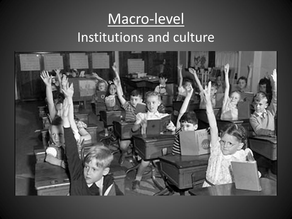 Macro-level Institutions and culture