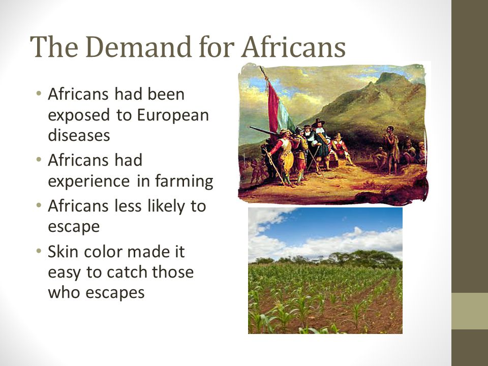 The Demand for Africans Africans had been exposed to European diseases Africans had experience in farming Africans less likely to escape Skin color ma