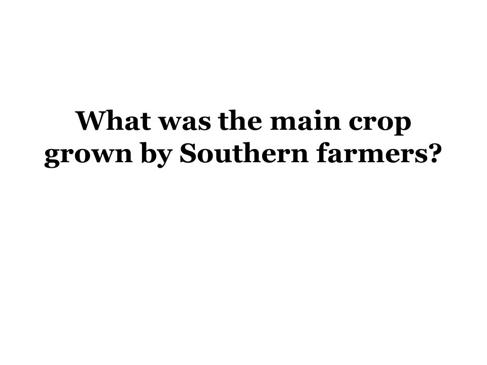 What was the main crop grown by Southern farmers?