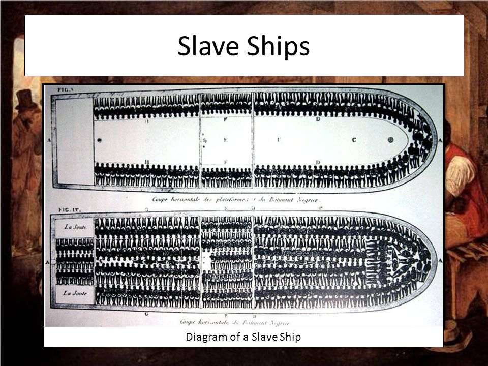 Slave Ships Diagram of a Slave Ship Up close