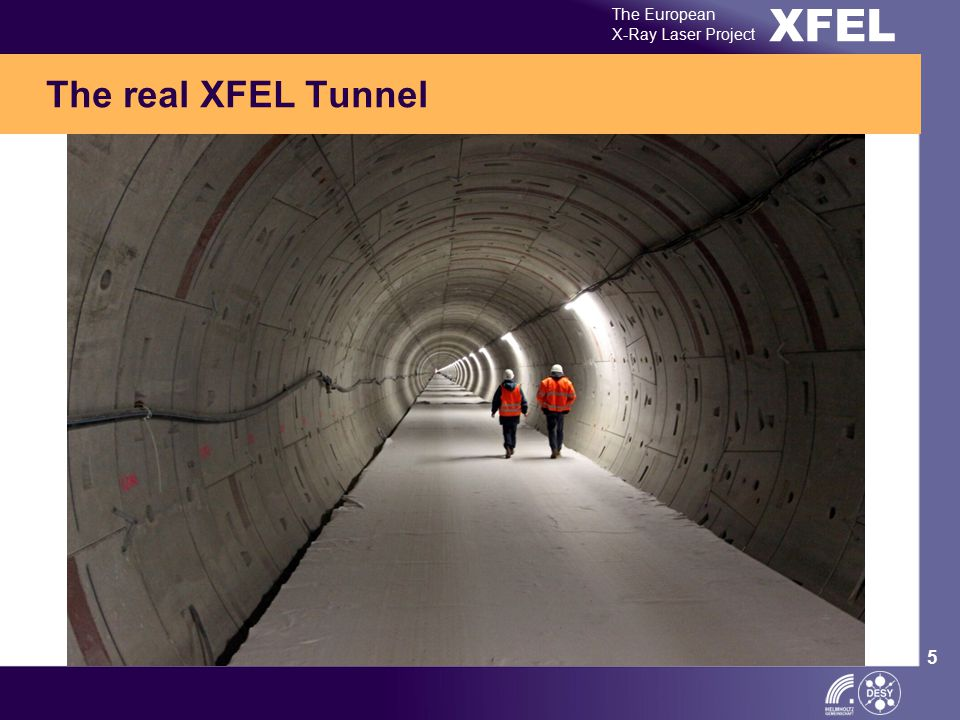 XFEL The European X-Ray Laser Project 5 The real XFEL Tunnel