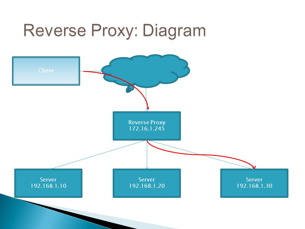 Client Server 192.168.1.30 Server 192.168.1.20 Server 192.168.1.10 Reverse Proxy 172.16.1.245
