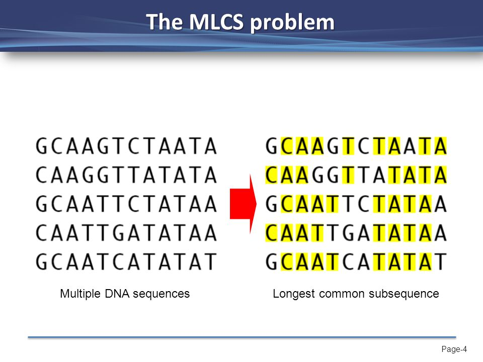 Page-4 The MLCS problem Multiple DNA sequencesLongest common subsequence