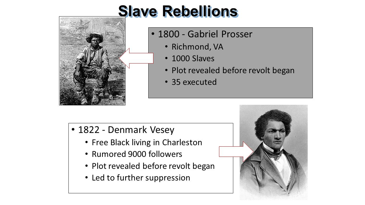 Slave Rebellions 1800 - Gabriel Prosser Richmond, VA 1000 Slaves Plot revealed before revolt began 35 executed 1822 - Denmark Vesey Free Black living