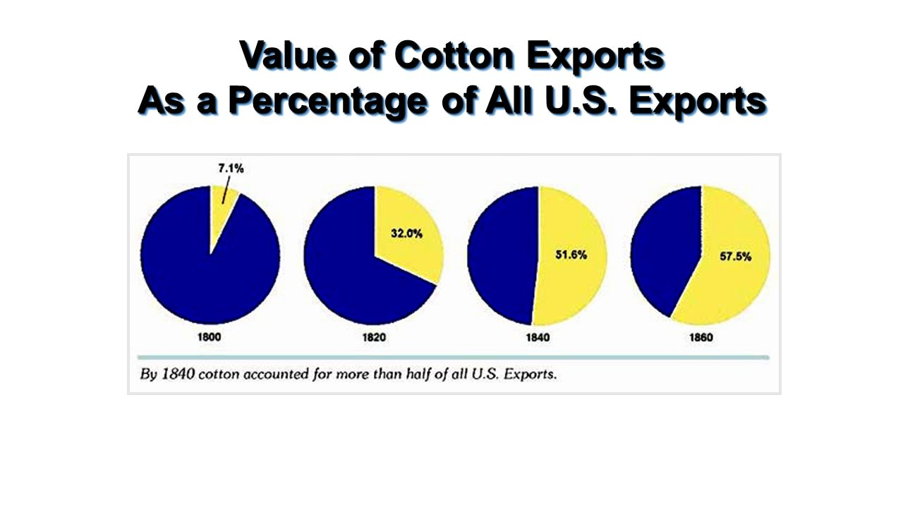 Value of Cotton Exports As a Percentage of All U.S. Exports