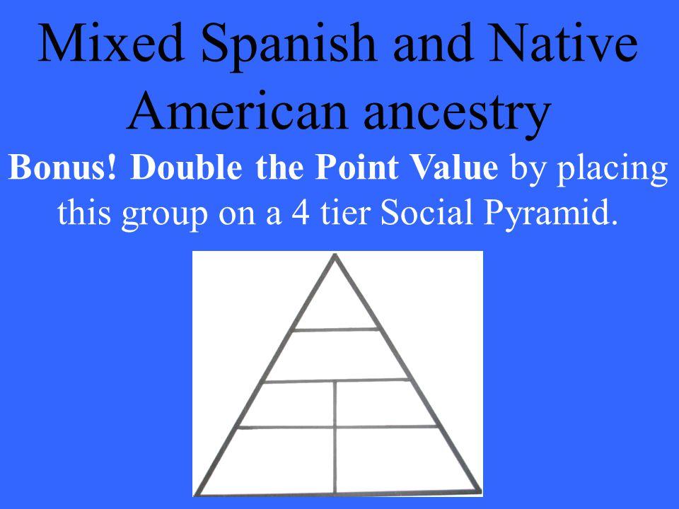 What is a Mestizo?. Bonus answer: Peninsulare Creole Mestizo Native American Mulatto Slave