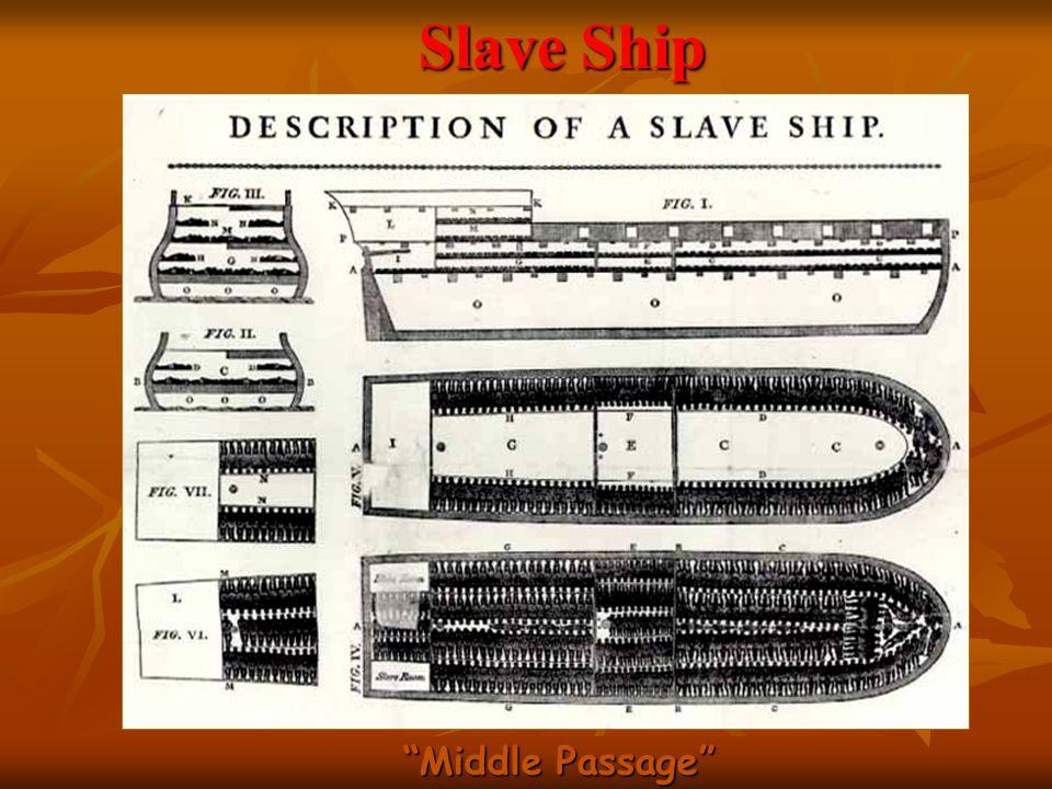 Slave Ship Middle Passage