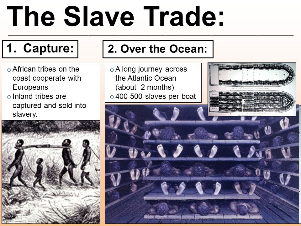 The Slave Trade: ________________________________________________________ 1.Capture: o African tribes on the coast cooperate with Europeans o Inland t