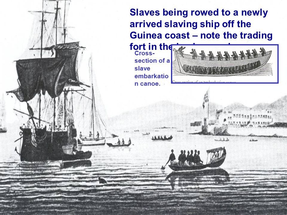 Slaves being rowed to a newly arrived slaving ship off the Guinea coast – note the trading fort in the background.