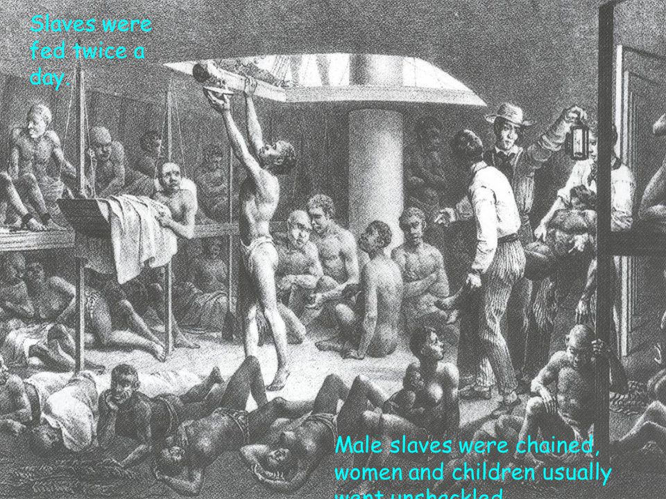 Slaves were fed twice a day. Male slaves were chained, women and children usually went unshackled.