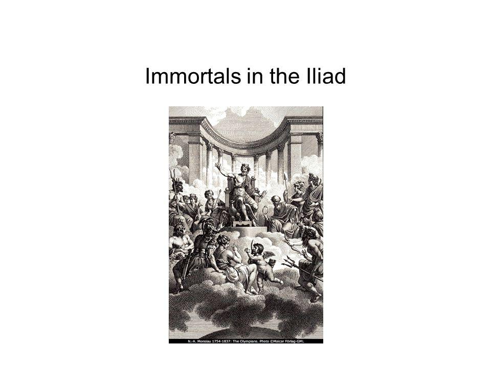 Immortals in the Iliad