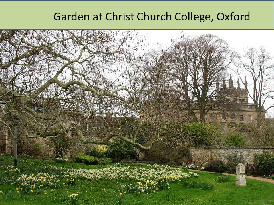 Garden at Christ Church College, Oxford