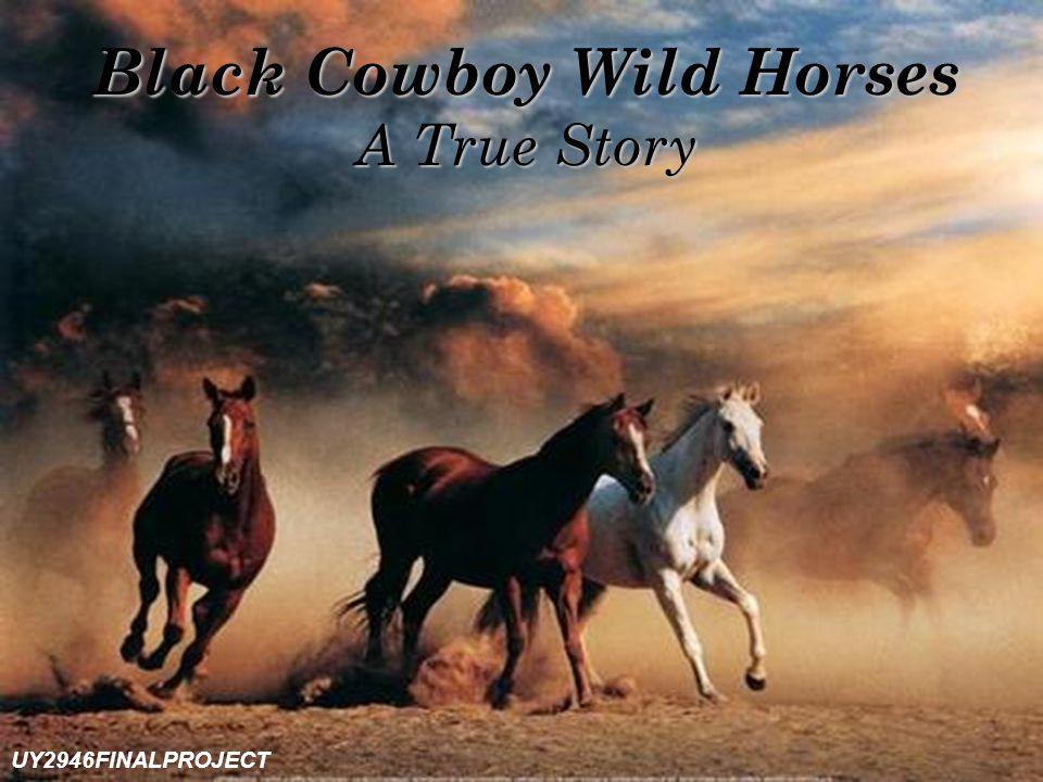 Black Cowboy Wild Horses A True Story UY2946FINALPROJECT