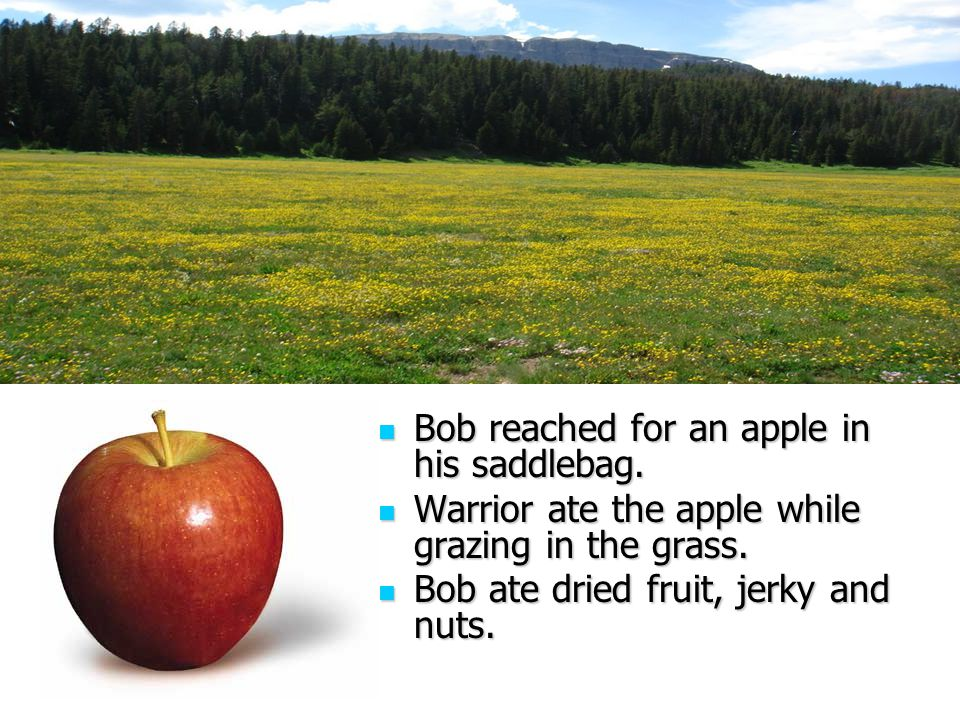 Bob reached for an apple in his saddlebag. Bob reached for an apple in his saddlebag.