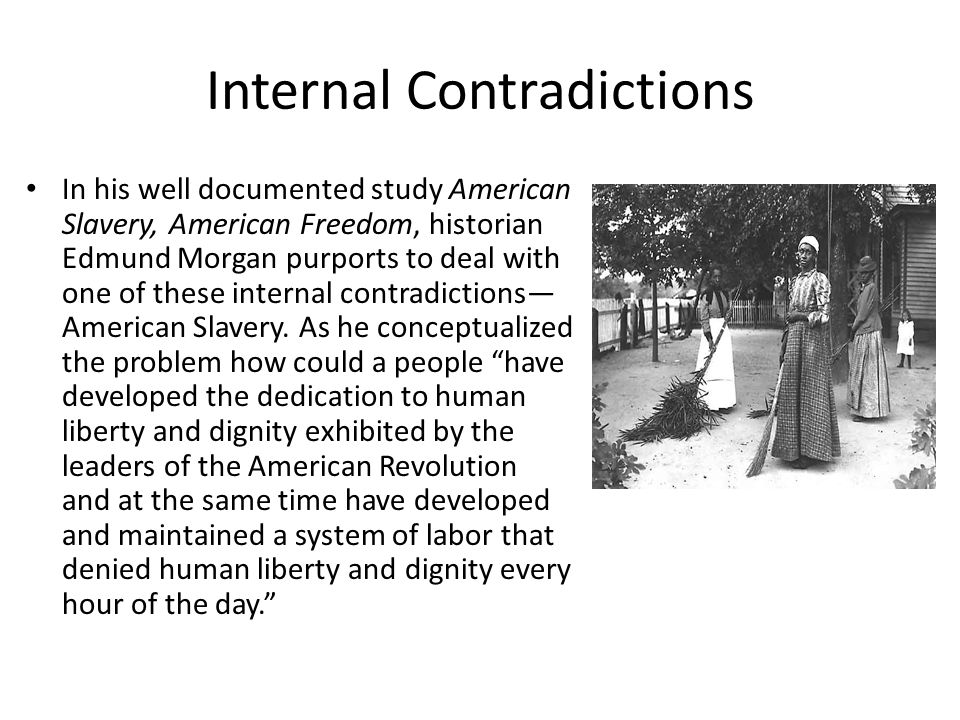 Internal Contradictions In his well documented study American Slavery, American Freedom, historian Edmund Morgan purports to deal with one of these in
