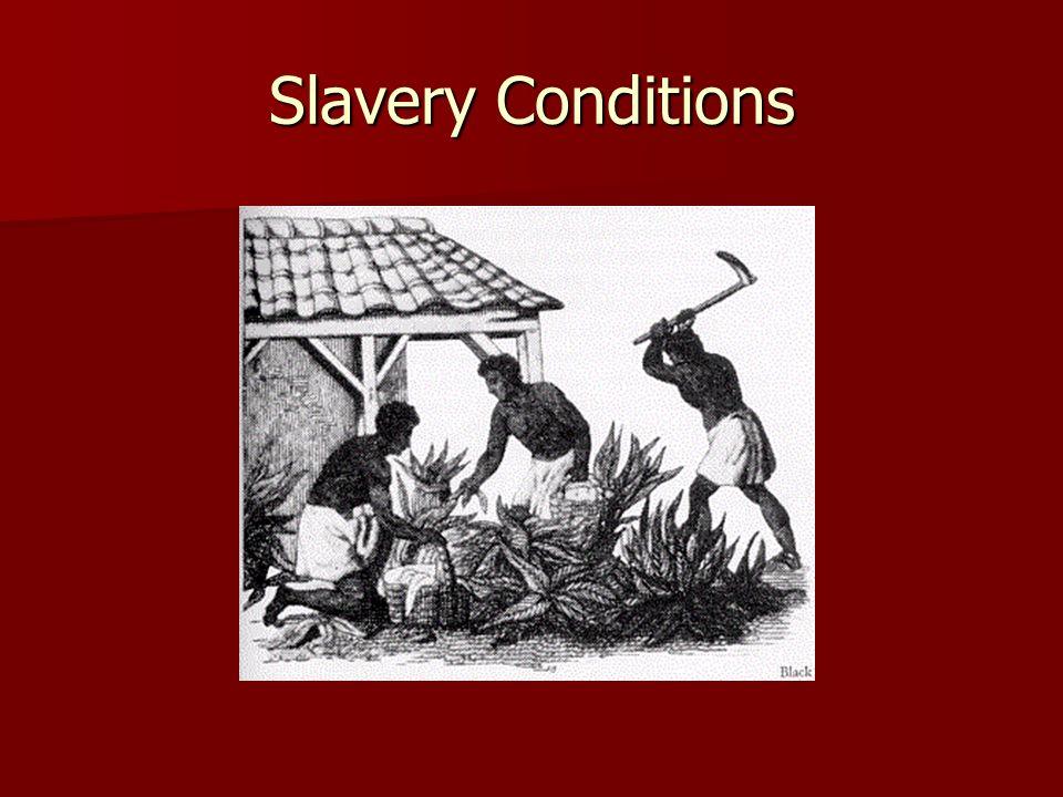 Slavery Conditions