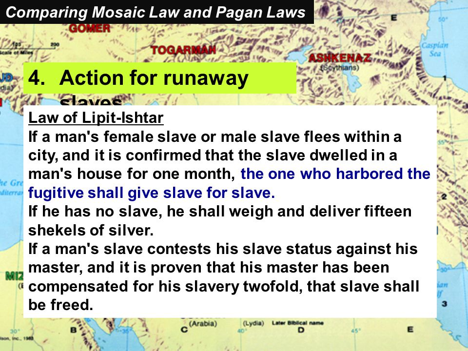 Comparing Mosaic Laws and Pagan Laws 4.Action for runaway slaves Law of Lipit-Ishtar If a man s female slave or male slave flees within a city, and it is confirmed that the slave dwelled in a man s house for one month, the one who harbored the fugitive shall give slave for slave.