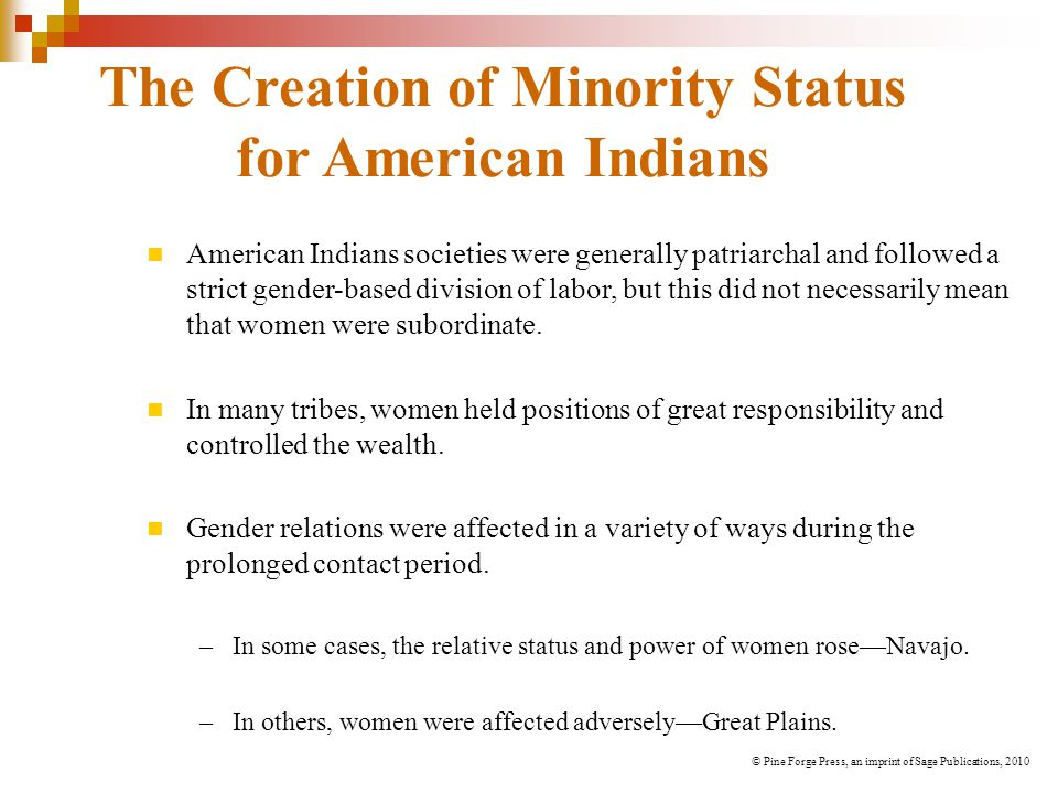 The Creation of Minority Status for American Indians American Indians societies were generally patriarchal and followed a strict gender-based division