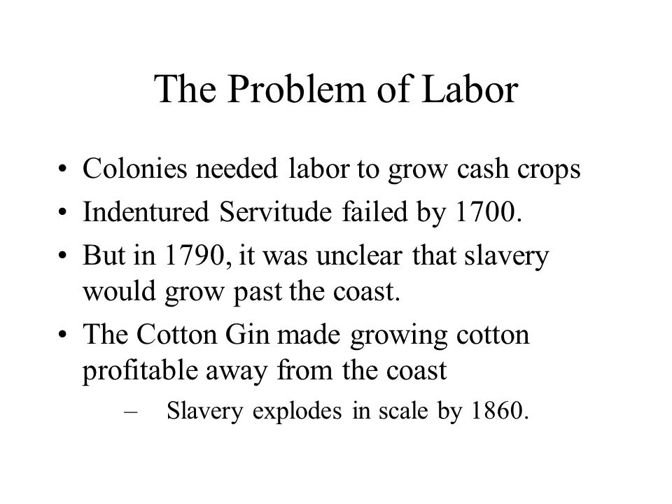 The Plantation System Slaves work 6 days a week Organized into gangs by age/health –Each gang has a slave chosen as Driver to lead it.