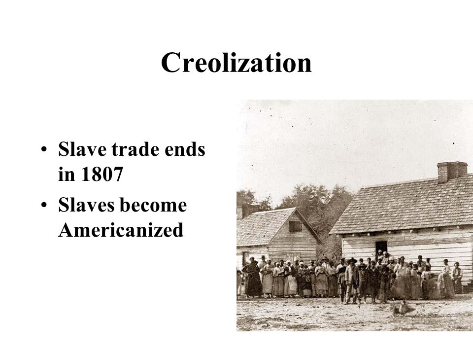 Creolization Slave trade ends in 1807 Slaves become Americanized