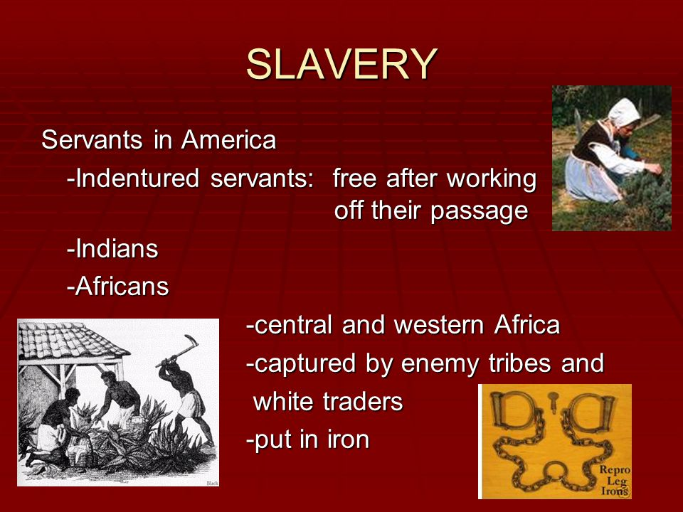 SLAVERY Servants in America -Indentured servants: free after working off their passage -Indians-Africans -central and western Africa -captured by enemy tribes and white traders white traders -put in iron