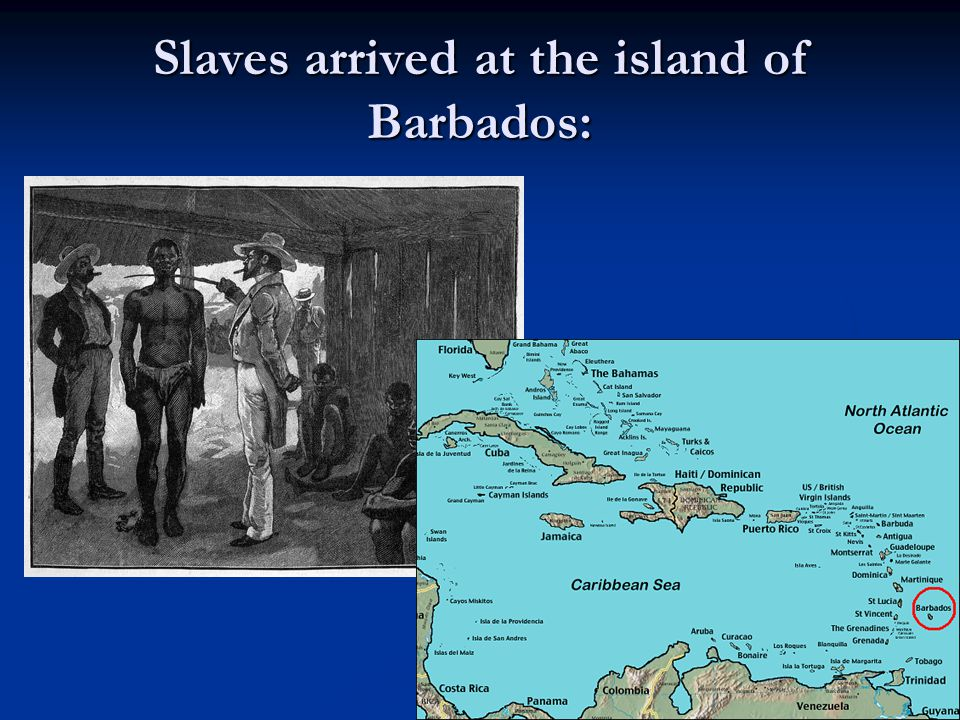 Slaves arrived at the island of Barbados: