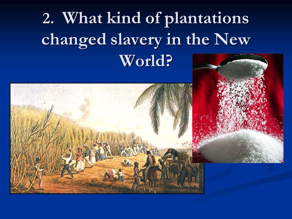 2. What kind of plantations changed slavery in the New World?