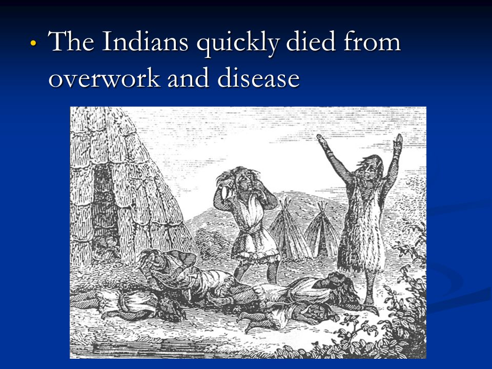 The Indians quickly died from overwork and disease The Indians quickly died from overwork and disease