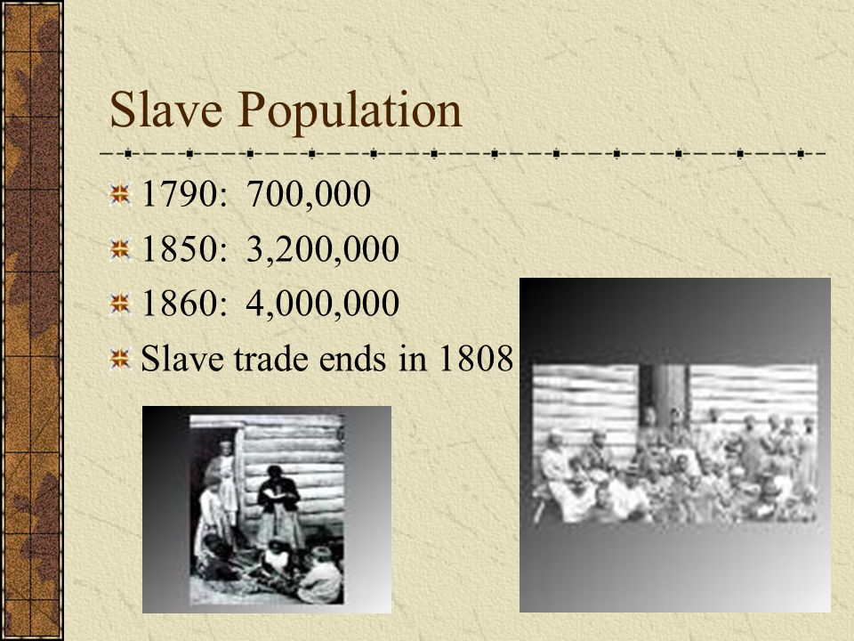 Slave Population 1790: 700,000 1850: 3,200,000 1860: 4,000,000 Slave trade ends in 1808