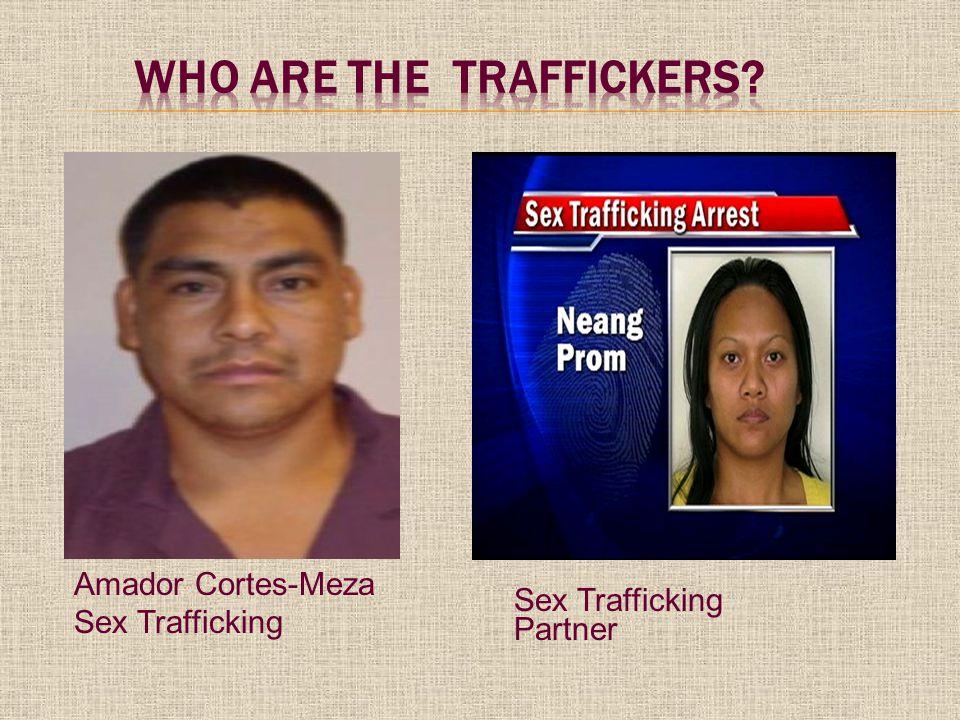 Amador Cortes-Meza Sex Trafficking Sex Trafficking Partner