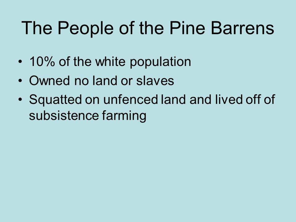 The People of the Pine Barrens 10% of the white population Owned no land or slaves Squatted on unfenced land and lived off of subsistence farming