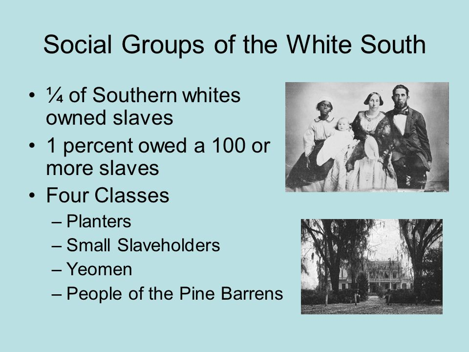 Social Groups of the White South ¼ of Southern whites owned slaves 1 percent owed a 100 or more slaves Four Classes –Planters –Small Slaveholders –Yeomen –People of the Pine Barrens